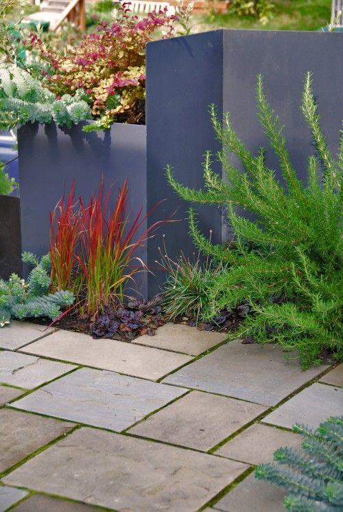 Peindre le mur du fond et jouer sur les contrastes des teintes pour un jardin contemporain. Www.monjardin-materrasse.com