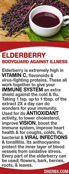 Elderberry is extremely high in vitamin C, flavonoids & virus-fighting…