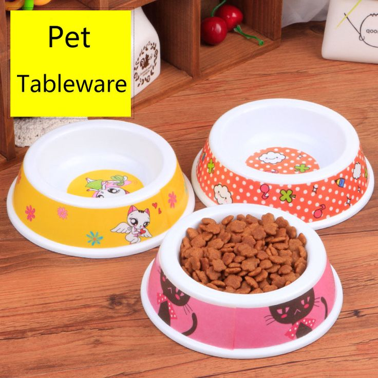 Colorful Cat Dog Feeding Bowl Drinking Water Bowl Puppy Feeder Food Pet Tableware Color Random // FREE Shipping //     Get it here ---> https://thepetscastle.com/colorful-cat-dog-feeding-bowl-drinking-water-bowl-puppy-feeder-food-pet-tableware-color-random/    #catoftheday #kittens #ilovemycat #lovedogs #pup