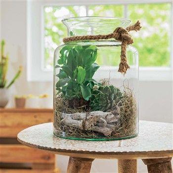 vase avec plantes et d cors plantes grasses d co maison diy plants et bricolage. Black Bedroom Furniture Sets. Home Design Ideas