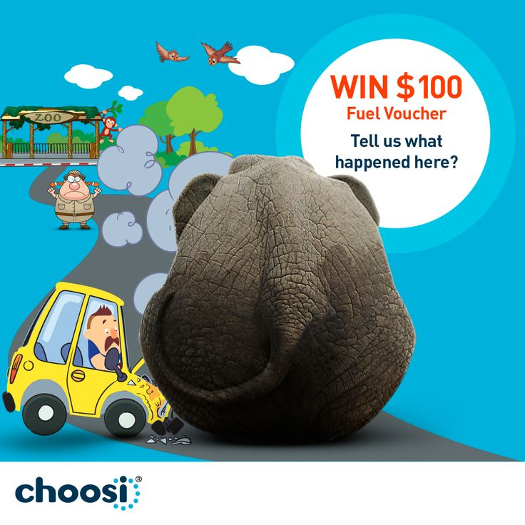 Tell Us In  Words Or Less How Did Norm End Up Crashing Into An Elephant Enter Here Https Www Facebook Com Choosiinsurance You Cant Choose When The