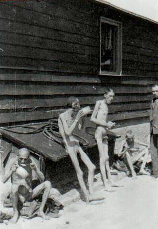 Demain l'Homme, ex SOS-planete : Shoa : camps de concentration, camps d'extermination, se souvenir, pour qu'une telle horreur ne se reproduise jamais.