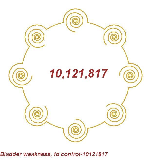 Bladder weakness(absence of)