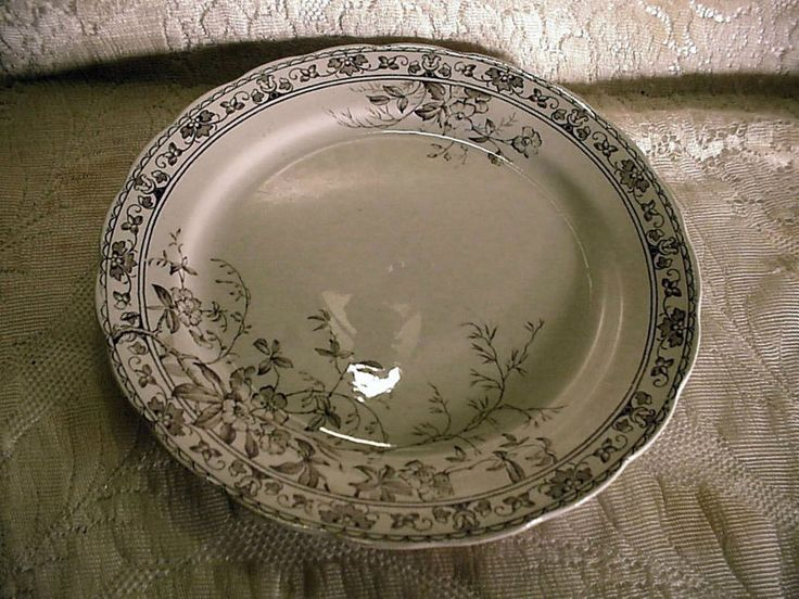 Wedgwood & Co Orlando Brown Transfer 9 & 3/4 in dia Dinner Plate Semi-Porcelain