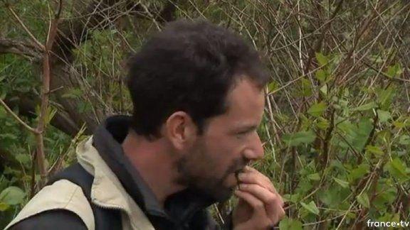 Les plantes n'ont pas de secret pour Vianney Clavreul le guide nature de la Baie de Somme / © France 3 Picardie