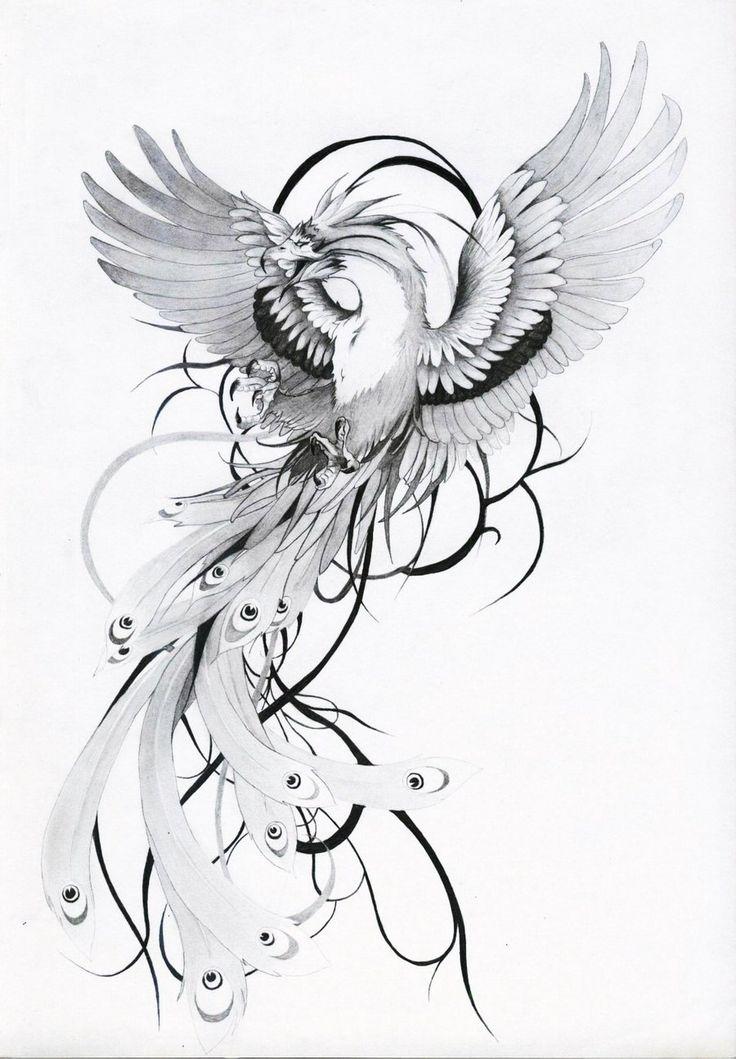 25 Best Ideas About Phenix Tattoo On Pinterest Phoenix Phnix And Flammen