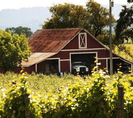 Sonoma – Kaliforniens charmigaste vingårdar