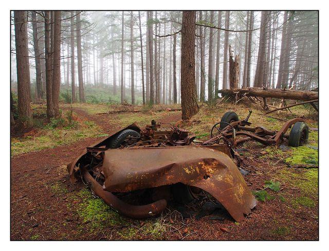 Caminhão velho em uma floresta nevoenta