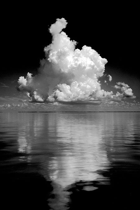 Beautiful Florida by Clyde Butcher