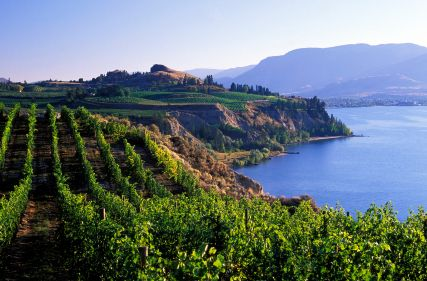 Ironman Canada - scenic vineyards cliffs lake. Challenge took over this race event and venue from IM (now called Challenge Penticton), so give it a look, ...and even consider getting a relay team together!