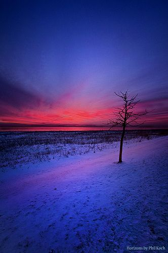 An Audience of One | Wisconsin Horizons by Phil Koch.