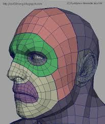 Image result for face topology