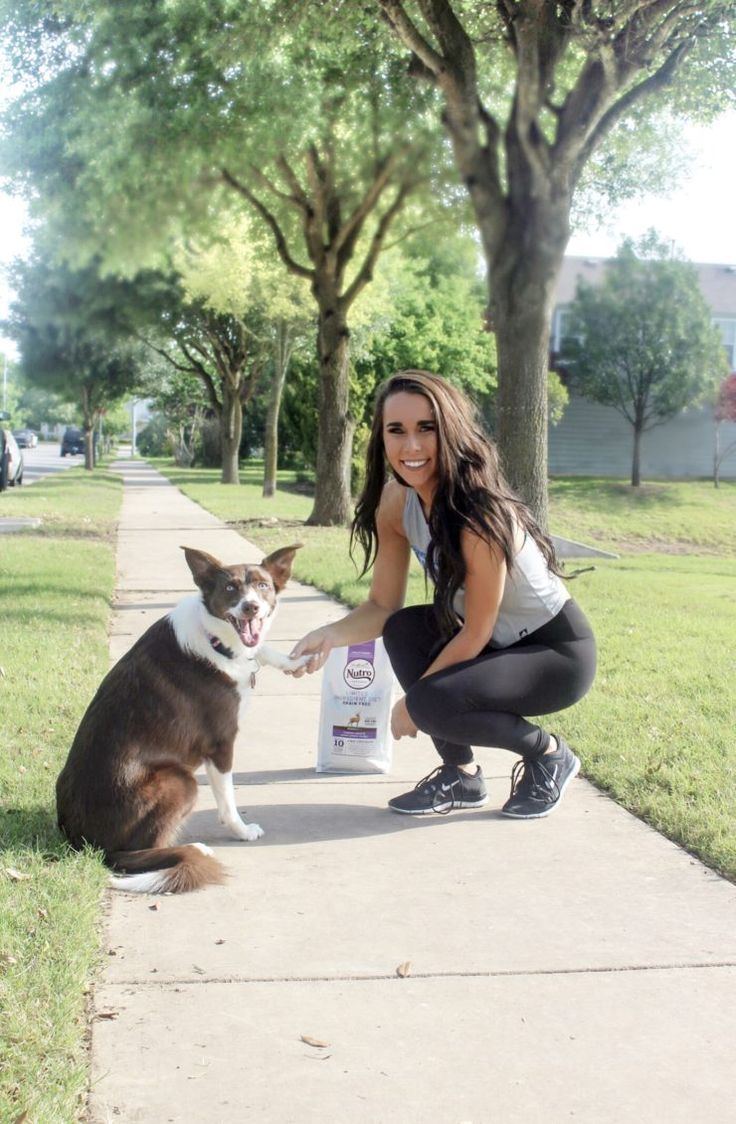 I recently switched her over to NUTRO dog food, and she has been loving it! It's a natural dog food that uses non-GMO ingredients, so I know she  is... #ad