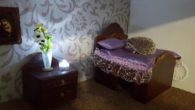 Vicrotian bedroom hedgie house