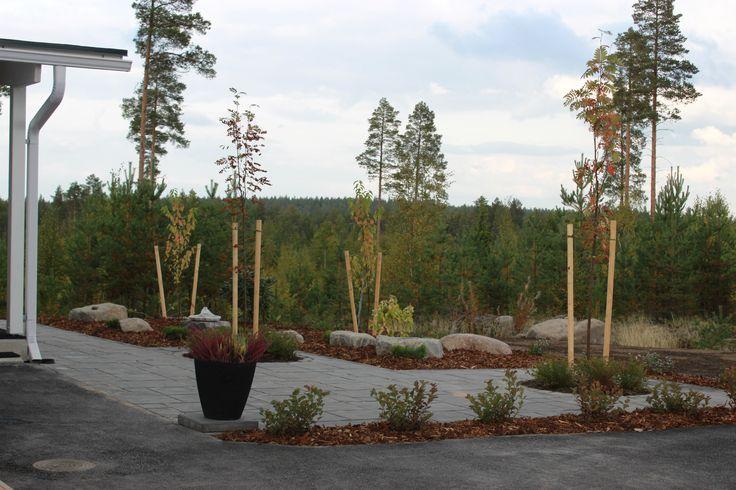 Ympäristöön sopiva #betonikiveys ja #kasvillisuus - #paving #trees #shrubs