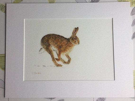 Hare print. This is a fine art print of an original watercolour and coloured pencil portrait of a running Hare created by myself in 2016. I use top quality Faber castell and Caran dache pencils. This piece is bright and vibrant, the oranges and yellows in the hares fur and eye really pop! Ideal as a gift for a wedding, new home, pretty much any occasion. All my prints come fully mounted in conservation grade mounts I only use acid free mounts, tape and 315gsm paper to prolong the life of the…