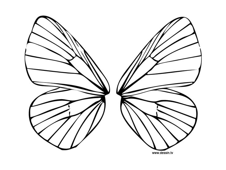 butterfly wings coloring pages - fairy wings to colour diplodocus para colorear fairy