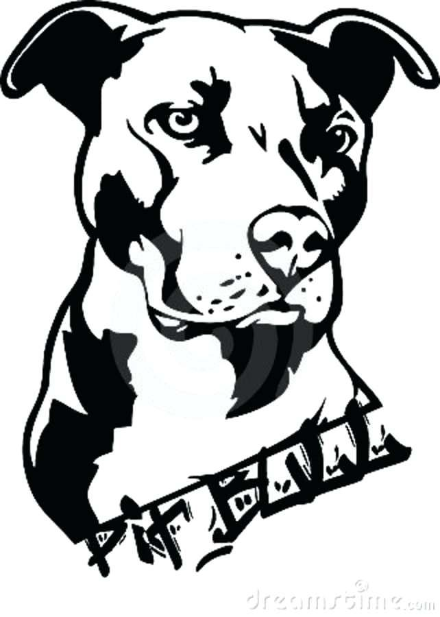 Simple Dog Face Pumpkin Pit Bull Kid Stencil 4