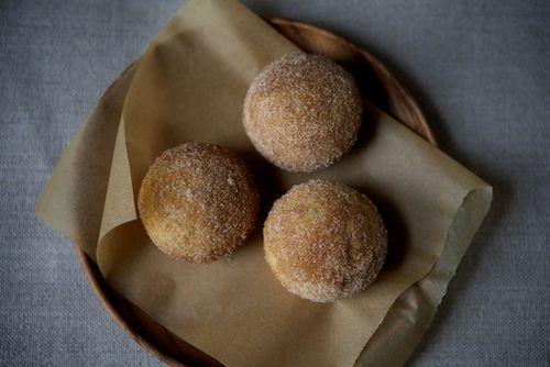 "cinnamon sugar breakfast ""puffs"" (donut-hole-esque). shut. the fron..."