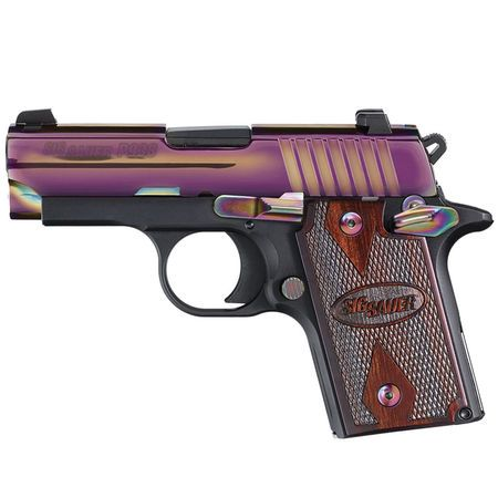 SIG Sauer P938 Rainbow Handgun-914314 - Gander Mountain