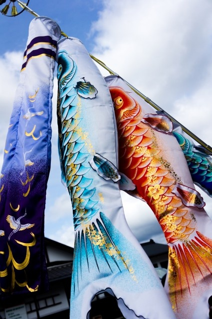 Japanese carp streamers for Children's Day