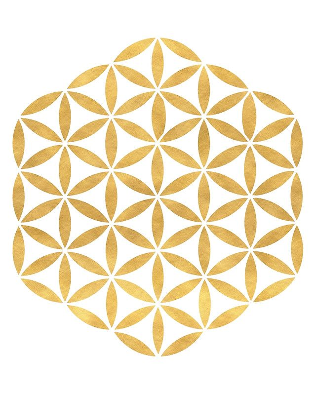 FLOWER OF LIFE sacred geometry -  The flower of life has a deep spiritual significance. It holds the seed of life, and the tree of life inside of itself, an is the extensions of the patterns of creation. Great knowledge can be gained by studying this symbol.  flower of life sacred geometry geometric abstract bedroom spiritual creation pattern seed of life gold new age