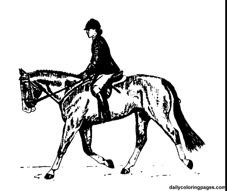 Paard Met Ruiter Kleurplaat English Rider Horse Coloring Pages Horse Coloring Pages