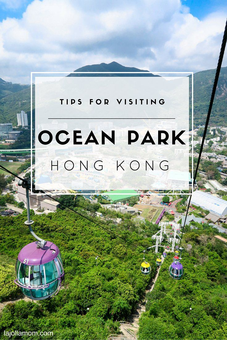 Learn the best tips for visiting Ocean Park, a sea-themed attraction in Hong…