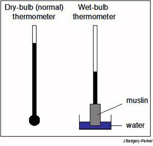 wet bulb temperature