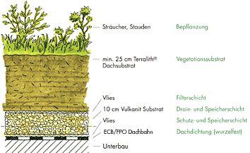 Image result for flachdach begrünen aufbau