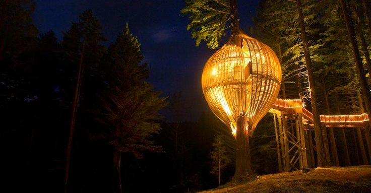 Redwood Treehouse restaurant by Pacific Environment Architects