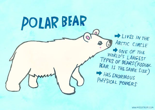 365 Days of Animals by My Zoetrope 207: Polar Bear Pen/Ink/Digital
