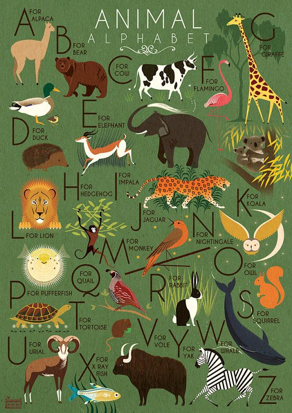 Animal Alphabet Poster Print A3 A2 A1 Childrens A-Z Art Deco 1940's Vintage Illustration Elephant Monkey Lion Koala Zebra Flamingo Giraffe