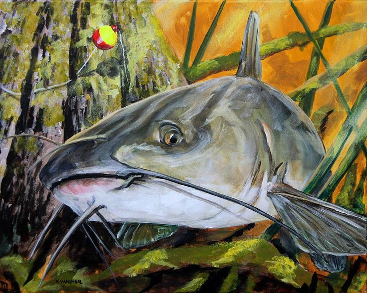 Channel Catfish Painting by Karl Wagner Fish art, Sale