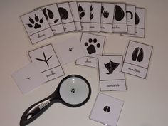 Crapouillotage: Cartes de Nomenclatures : EMPREINTES ANIMAUX