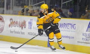 Groupon - $ 17 for a Regular-Season Providence Bruins Hockey Game at Dunkin' Donuts Center (Up to $38 Value) in Dunkin' Donuts Center. Groupon deal price: $17