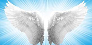 Судьба Ангелов http://www.bible-help.ru/sudba-angelov/