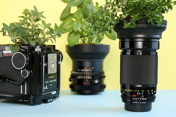 Recycle je gebroken lens tot een plantenbak!