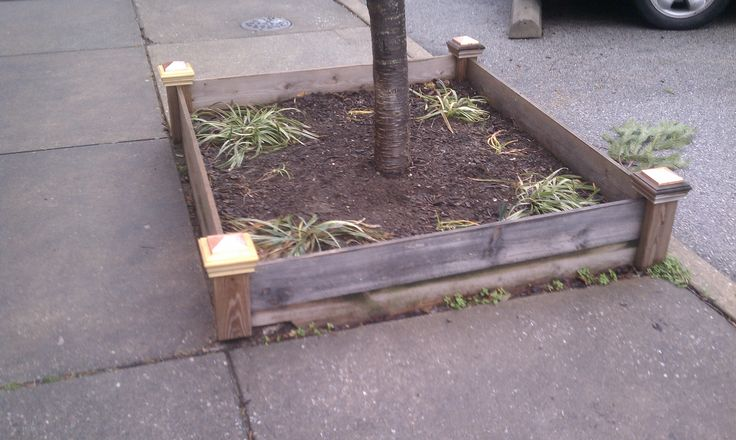 All wood Tree Pit Guard with
