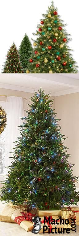 674 best Christmas Trees images on Pinterest | Merry christmas ...
