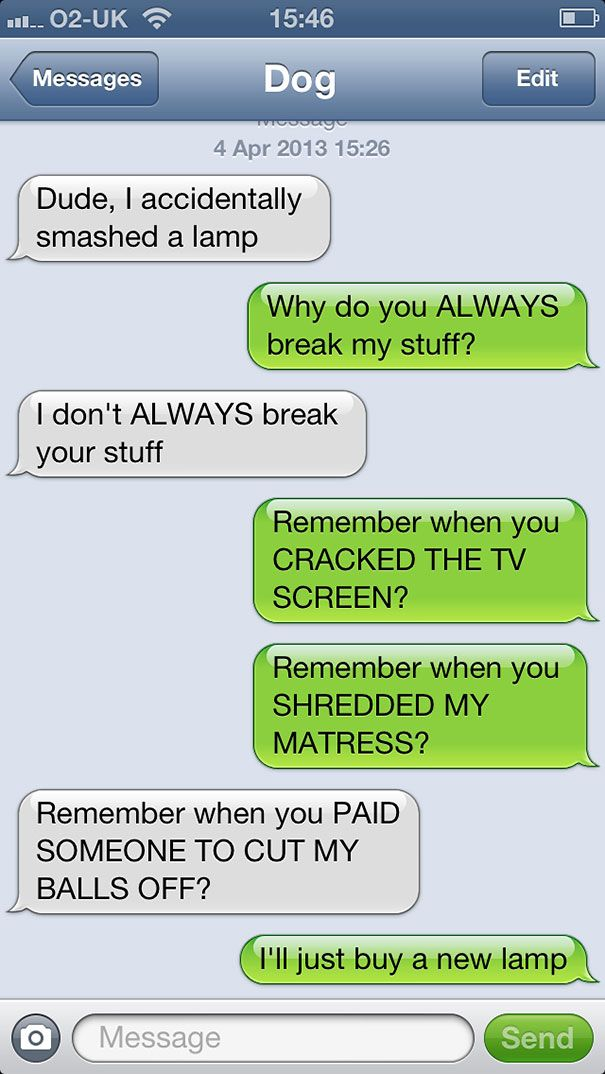 What If Dogs Could Text? 25 Hilarious Texts From Dogs  618K views  162 days ago by Dovas