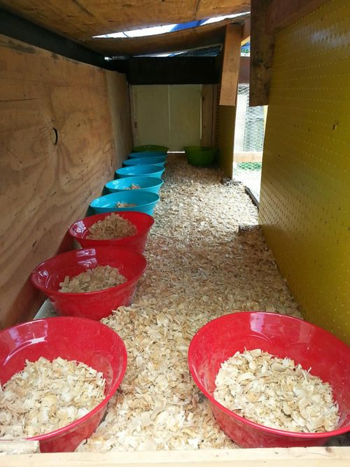 DIY Plastic Bowl Nesting Box - Only Cost about $1 each... #chickens