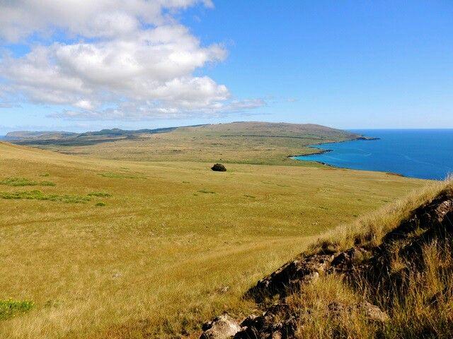 """El nombre de Poike, traducido habitualmente por """"cerro o colina"""", parece que proviene de la expresión rapanui """"Po"""" (noche); """"ike"""" (romper) que significa """"lugar donde se quiebra la noche"""" porque es el primer sitio de la isla que recibe los primeros rayos del sol naciente.  Efectivamente, el Poike está ubicado en el extremo más oriental de la Isla de Pascua, y es el más antiguo de los tres volcanes principales de la isla, junto al Rano Kau y el Ma'unga Terevaka, que originaron su formación. Se…"""