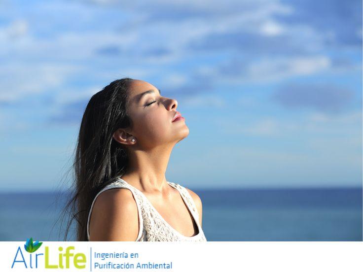 #airlife   purificación de aire airlife  ¿Cuáles son los beneficios de respirar aire puro rico en oxigeno? El oxígeno o aire puro estimula al sistema inmunológico del cuerpo por lo que se reducen síntomas de alergias, afecciones asmáticas o respiratorias. www.airlifeservice.com