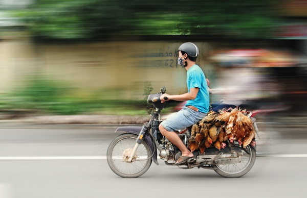 chicken by Ravenous Couple, via Flickr: Chicken, Flickr, Ravenous Couple, Vietnam, Box