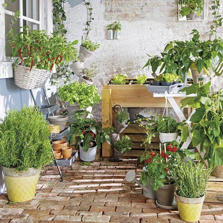 Latest een verticale of horizontale moestuin kan op elke for Groenten tuin