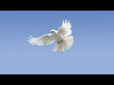 Come, Holy Ghost: A Wesleyan perspective on the Spirit - The United Methodist Church