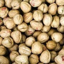 Walnoten goed voor bloeddruk en vaten - NU.nl | Voeding en het effect op hart en bloedvaten | Scoop.it