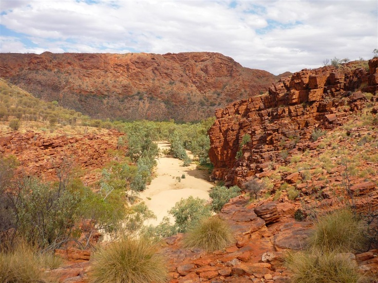 Trephina Gorge -  East MacDonnell Ranges  NT.
