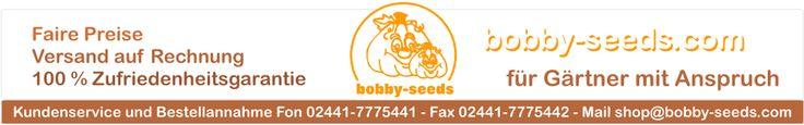 Samen, Saatgut, Sämereien von Bobby-Seeds - Bobby-Seeds Onlineshop - Baby Boo Baby Boo WKBB118